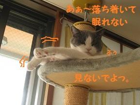 おちつかん (4).jpg