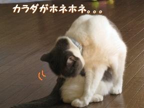 たべるよね (2).jpg