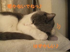 のぞ~きみ (4).jpg