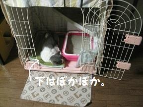IMG_6877.jpg